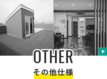 OTHER その他の仕様